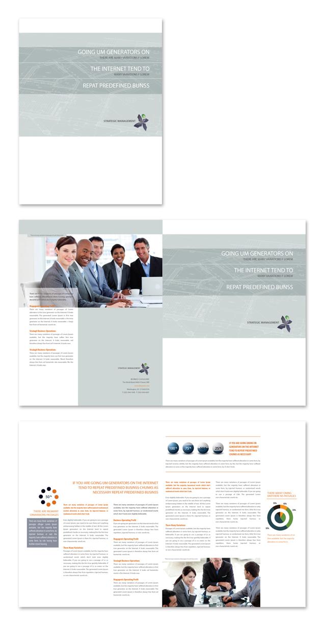 Strategic Management Brochure Template